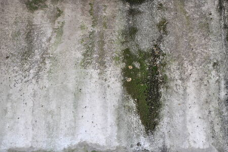 Old grunge concrete texture background photo