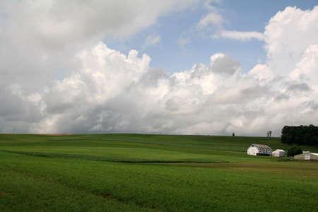 Green Open Farmland with Barn photo