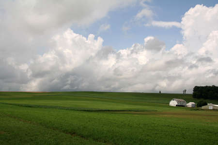 Green Open Farmland with Barn photo
