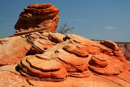 Vermilion Cliffs National Monument - North Coyote Buttes