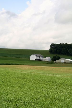 Farm House with Barn on Hill and Open Green Field photo