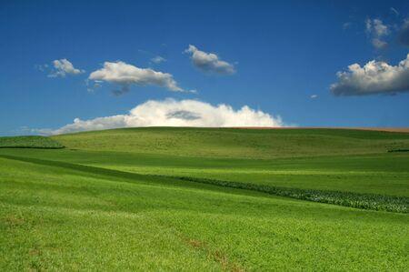 Rolling Green Hills on Farmland with Blue Sky