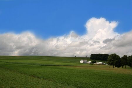 Rolling Green Hills on Farmland with Blue Sky photo