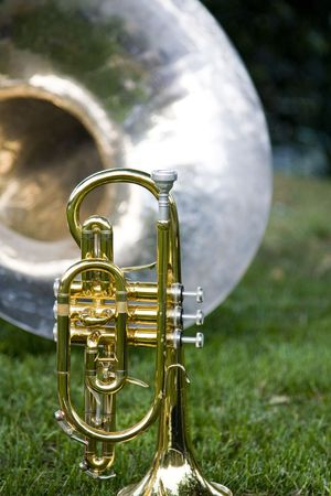 Trumpet with Band Instruments in Background on Green Grass