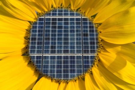 Solar Panels Inside of a Sunflower Concept photo