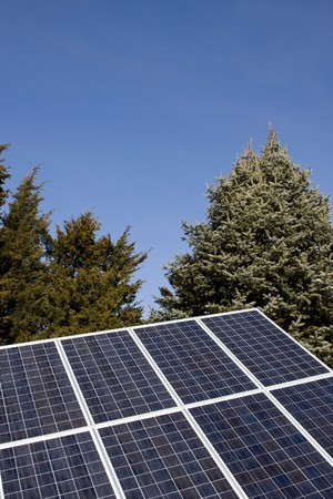 Series of Photovoltaic Solar Panels with Trees in Background