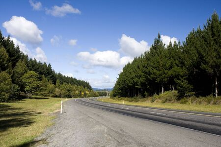 Highway in Rural Area with Forest and Sky Stock Photo - 4865837