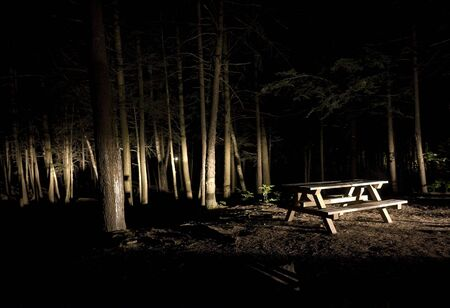 Dark Camp Site with Picnic Table in the Light Фото со стока
