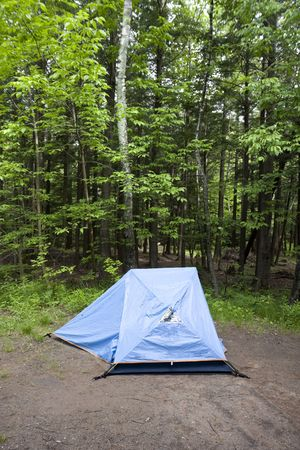 Blue Tent in the Woods on a Campsite