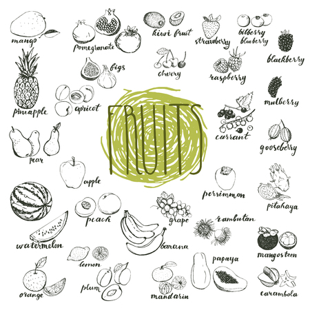 Hand drawn sketches of organic fruits. Elements for menu design.