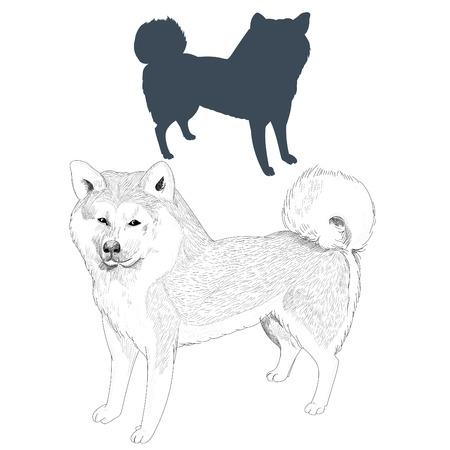 Hand drawn dog illustration isolated on white background.