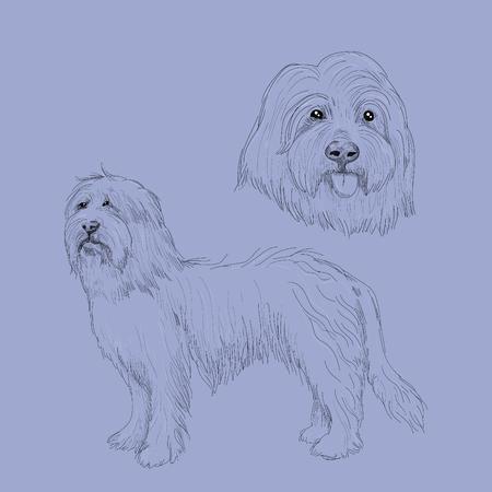Hand drawn dog portrait. Illustration
