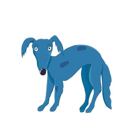 Whippet dog stares in anger. Illustration
