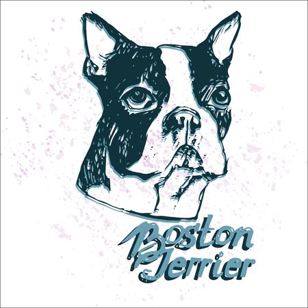 손으로 그려진 된 강아지 초상화 흰색 배경입니다. 순종 개 스케치입니다. 강아지 애호가를위한 티셔츠 프린트 템플릿.