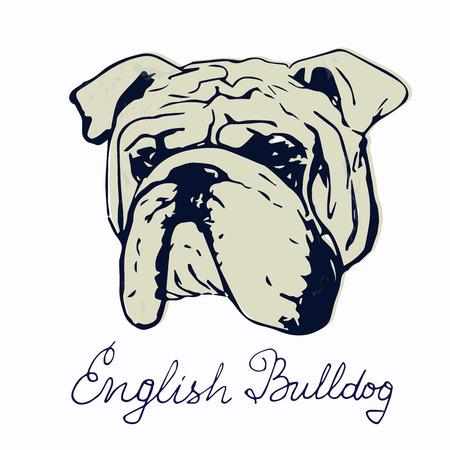 Dibujo de perro de raza pura. Plantilla de impresión de camiseta para los amantes del perro.
