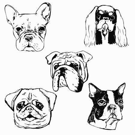 순종 작은 개 스케치. 강아지 애호가를위한 티셔츠 인쇄 아이디어. 개 클럽 로고 디자인 요소입니다.