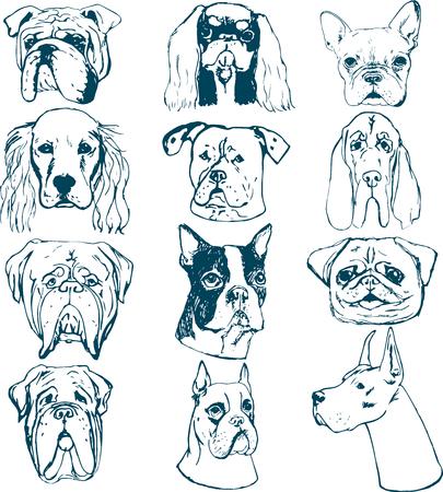 Conjunto de perro de vector. Bocetos de perros de raza pura. Elementos vectoriales para logotipos de clubes de perros. Impresiones de la camiseta para los amantes del perro.