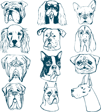 Vector dog set. Sketches of purebred dogs. Vector elements for dog club logos. T-shirt prints for dog lovers.