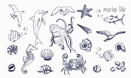 Underwater animals hand drawn sketch.