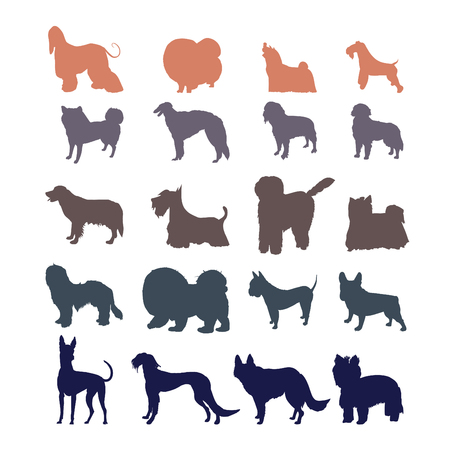 kerry blue terrier: Different dog breed silhouettes collection. Illustration