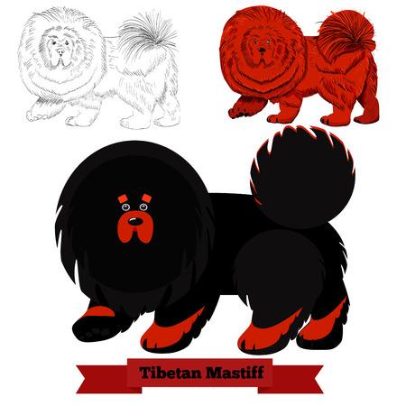 さまざまなスタイルでチベット犬の品種。  イラスト・ベクター素材