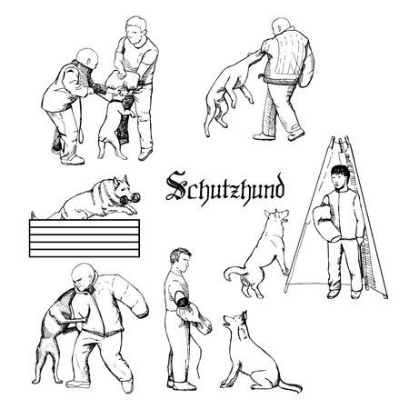 Hand getrokken hondentrainers in actie. Uitrusting voor hondensport. Stock Illustratie