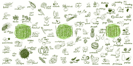 Hand drawn set of healthy food. Illustration