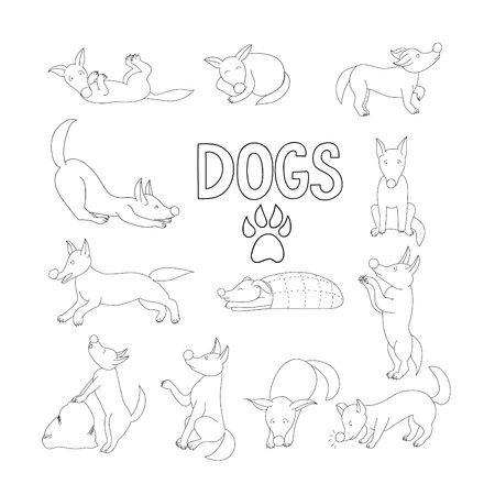 Collection of outline cartoon dog in different positions. Illustration