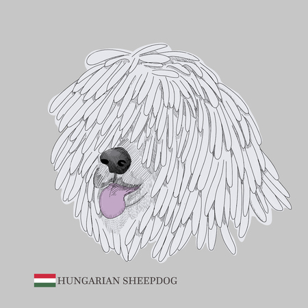 Hand drawn dog sketch and hungarian flag.