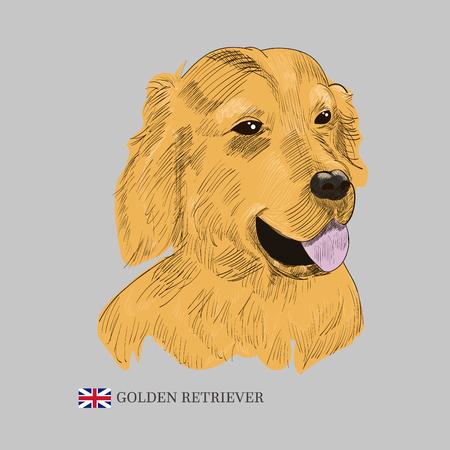 Schizzo di cane di razza disegnata a mano.