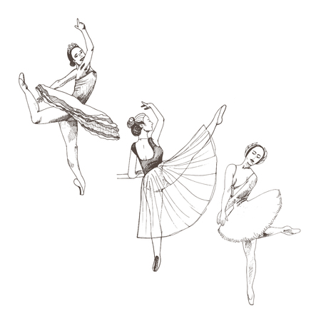 Graceful women wearing ballet tutu vector illustration.