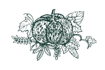 autumn colouring: Autumn pumpkin coloring page vector illustration. Illustration
