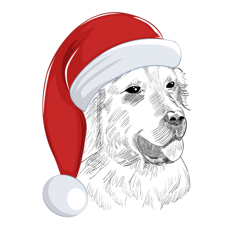 Hand drawn holiday pet for greeting card.
