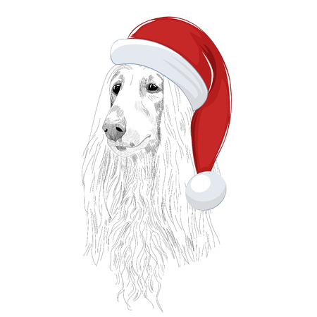 Hand drawn holiday dog sketch isolated on white background.