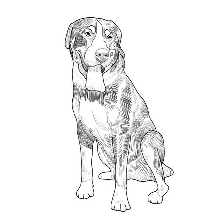 Panting dog sitting isolated on white background. Illustration