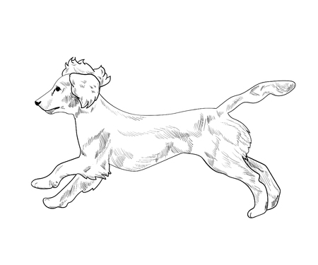 Side view of dog Illustration