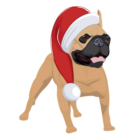 French Bulldog with Christmas hat isolated on white background. Purebred dog panting and wearing Santa hat. Illustration