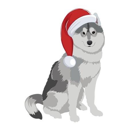Purebred dog wearing Santa hat.