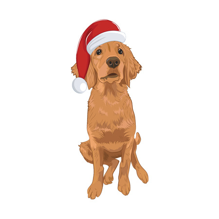 Golden Retriever cute puppy wearing Santa hat sitting. Yellow dog isolated on white background. Purebred Santa dog for your design. Illustration