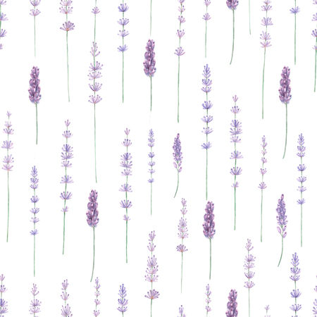 Lavender watercolor seamless pattern. Hand painted watercolor blooming lavender branches on white seamless background.