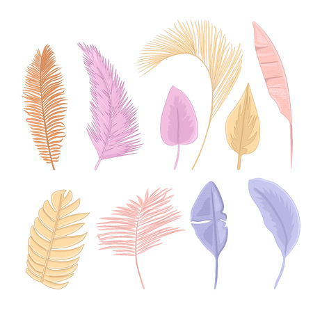 Tropical leaves pastel collection.