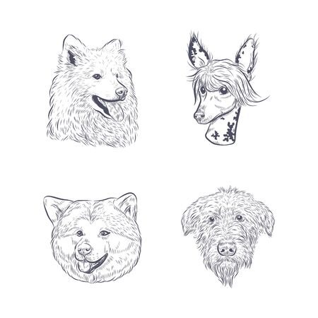 Purebred dog faces isolated on white background. Vettoriali