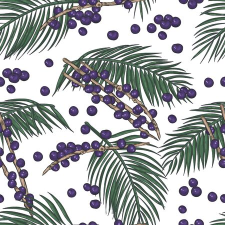 Acai plant elements and berries seamless background.