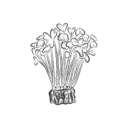 Super food seedling hand drawn vector. Healthy nutrition element.
