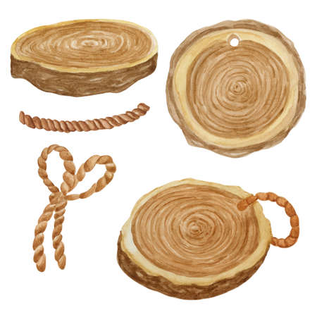 Wooden cut collection watercolor illustration. Wood coaster set isolated on white background.