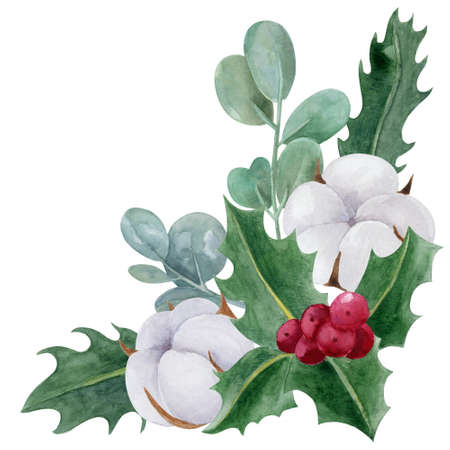 Christmas botanical border watercolor illustration. Holly, cotton and aucalyptus isolated on white background. Standard-Bild