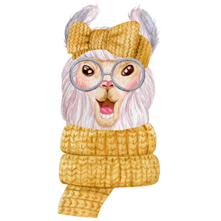 Winter llama portrait watercolor illustration. Cute llama wearing warm scarf and head band isolated on white background. 스톡 콘텐츠