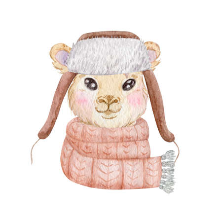 Winter llama portrait watercolor illustration. Cute llama wearing warm scarf and hat isolated on white background.