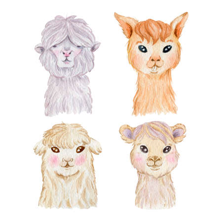 Llama portrait collection isolated on white background. Cute llama characters watercolor illustration. 스톡 콘텐츠