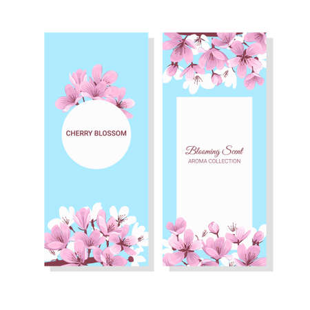 Blue flayers with pink cherry blossom vector. Fresh spring booklets isolated on white background.